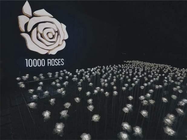 10000rosescafe-cebu