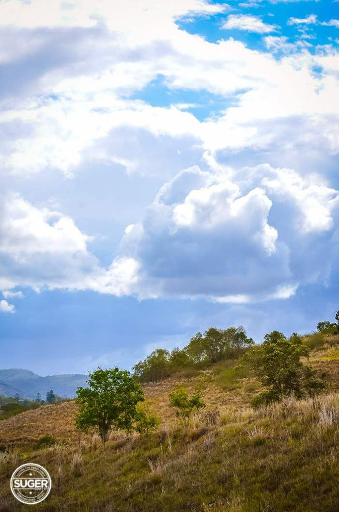 mary-valley-queensland-13