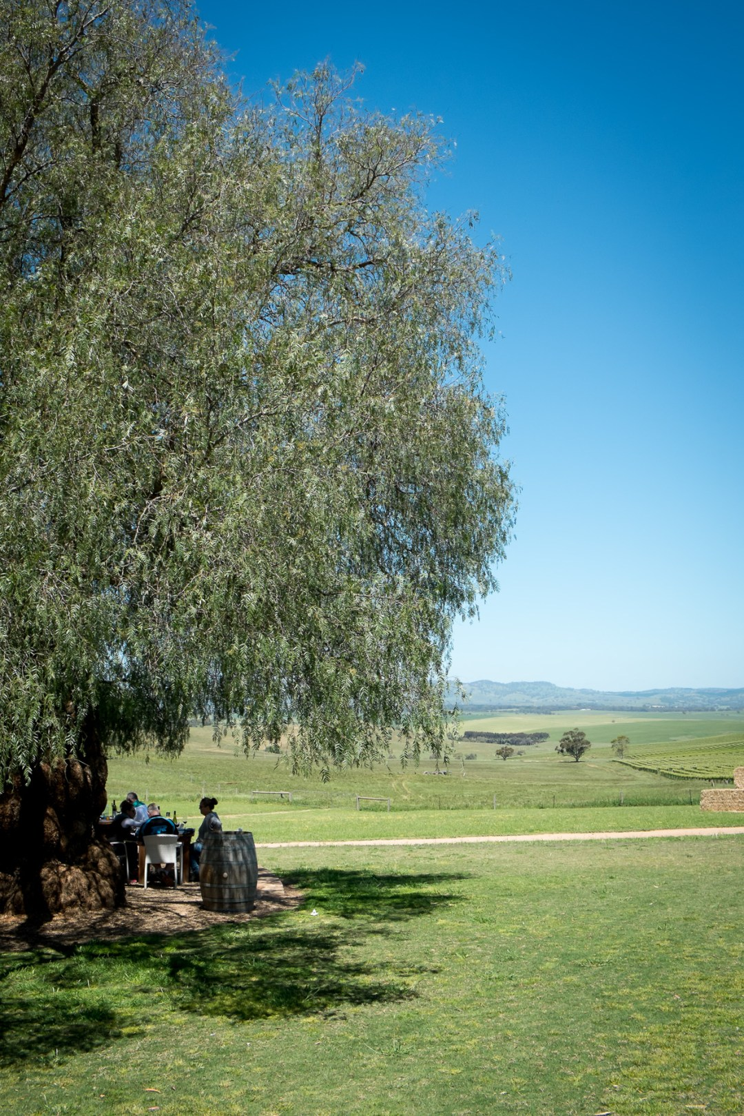 barossa-valley-wine-tour-weekend-6