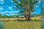 Near Bingara NSW