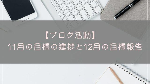 ブログ活動 報告 11月 12月