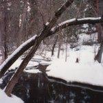 Snow Creek_pr