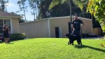 【犬猫動物動画まとめ】Tyson | Family Protection Dogs for Sale - Rottweiler |