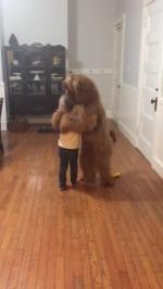 【犬猫動物動画まとめ】Little Girl Dances With Big Fluffy Dog