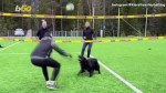 【犬猫動物動画まとめ】Move over Air Bud! This Volleyball-playing Dog Might Give You a Run for Your Money!