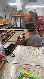 【犬猫動物動画まとめ】Cute Canine Customer Gives Slick Wink