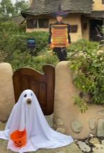 【犬猫動物動画まとめ】Dog Dressed in Ghost Costume Poses In Front of Spooky Cottage