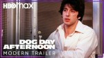 【犬猫動物動画まとめ】Dog Day Afternoon | Modern Trailer | HBO Max