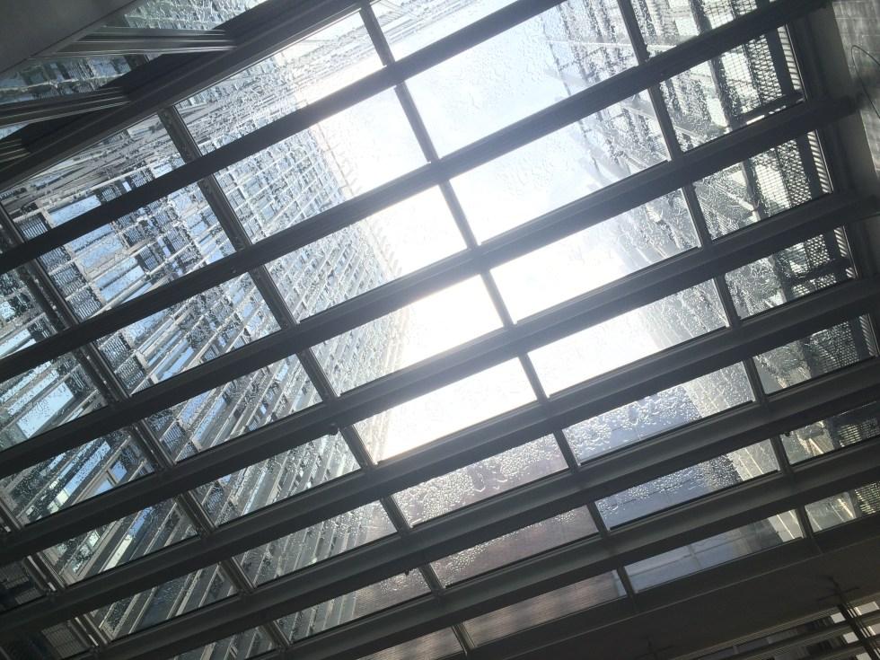 開放感のあるガラス屋根