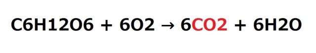 いちご大福のしゅわしゅわの化学式