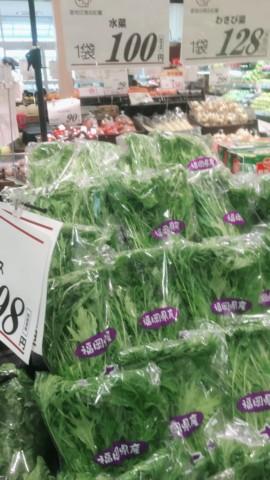 水菜の価格