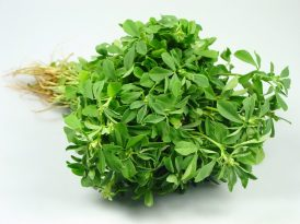 fenugreek-leaves-1024x768