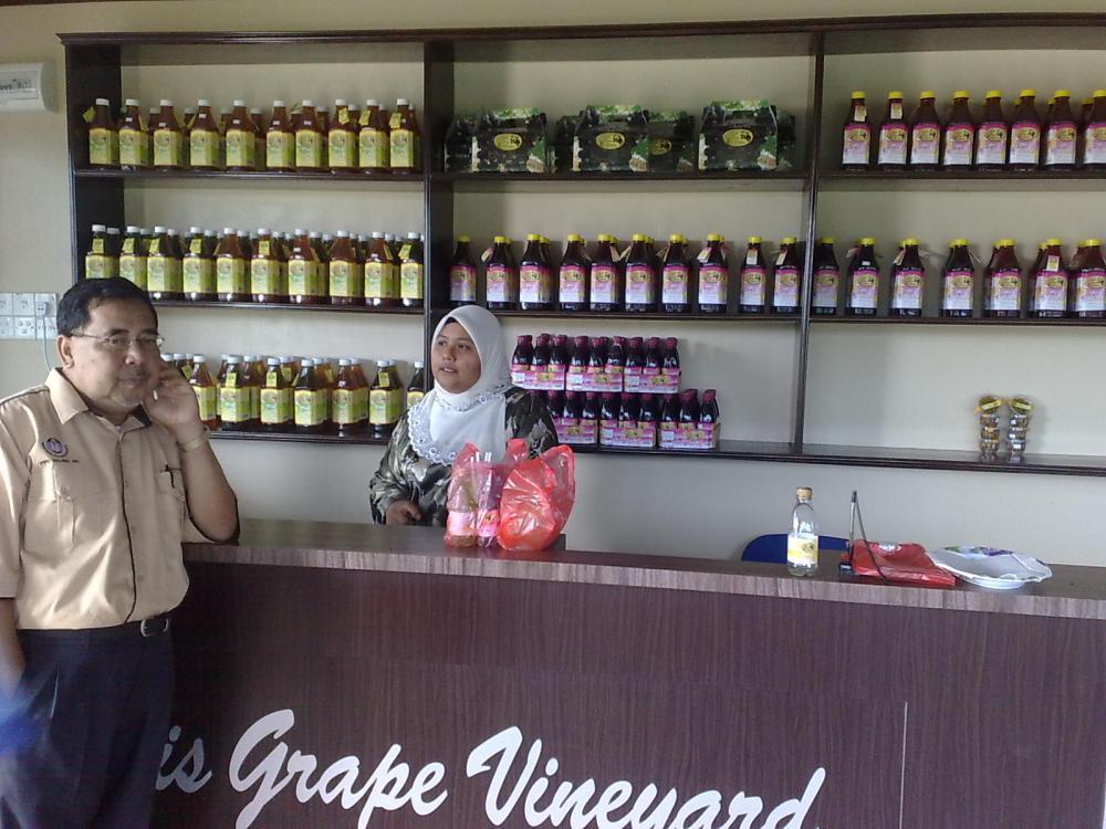Melawat Ladang Anggur Di Sik, Kedah: Beris Vineyard (5/6)