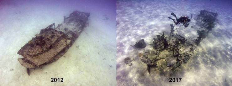 Saipan in situ preservation