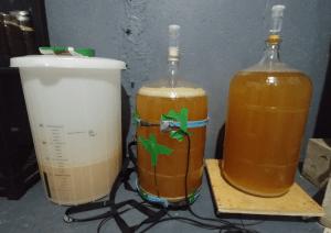 three beers fermenting