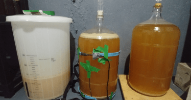 three beers fermenting