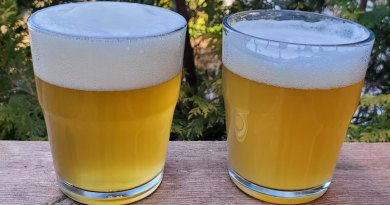 photo of two IPAs