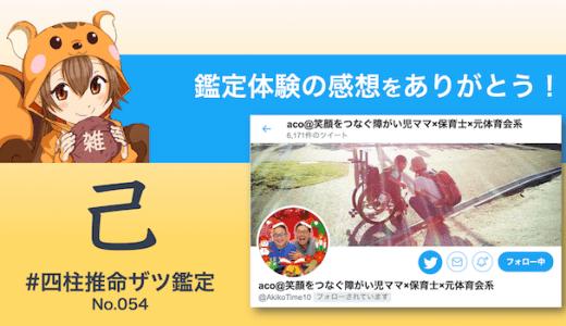 ザツ鑑定054|acoさん(感想)