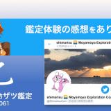 ザツ鑑定061|しまりすさん(感想)