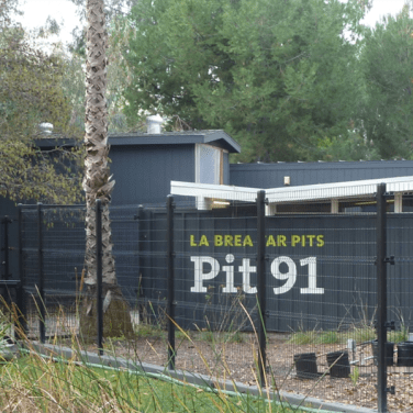 Pit 91 Viewing Station Exterior