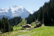 La Be 4/4 31 (ex-asm) avec la Jungfrau en arrière-plan