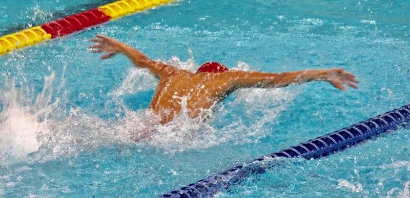 水泳 筋肉 効果