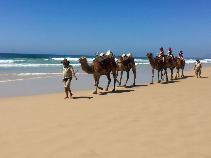 Take a camel ride on Lighthouse Beach.