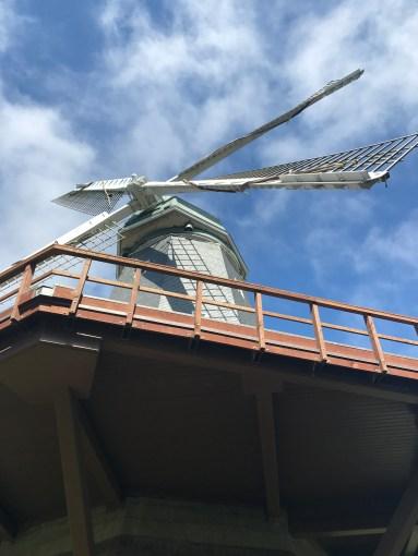 Murphy's Windmill