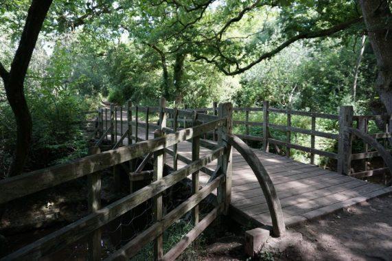 pooh bridge ashdown forest