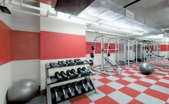 Fitness-490717