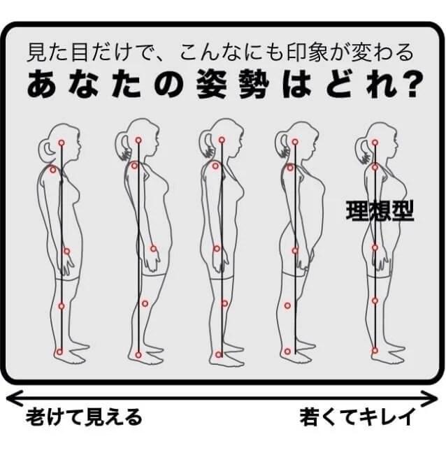 姿勢チェック 画像