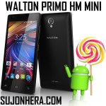 Walton Primo HM Mini: Android Phone Full Specifications & Price