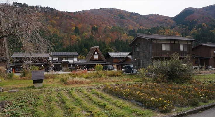 Melihat Shirakawago Dari Dekat 1