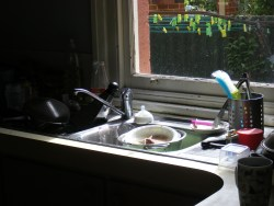 Morning dishes