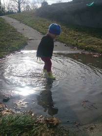 She can'r resist puddles...
