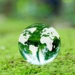 豊かなアロマ環境を守るために