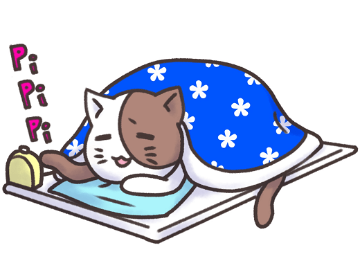 A cat in futon