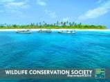 pantai berpasir yang masih cukup alami. terkadang dijadikan tempat oleh para nelayan sebagai tempat singgah