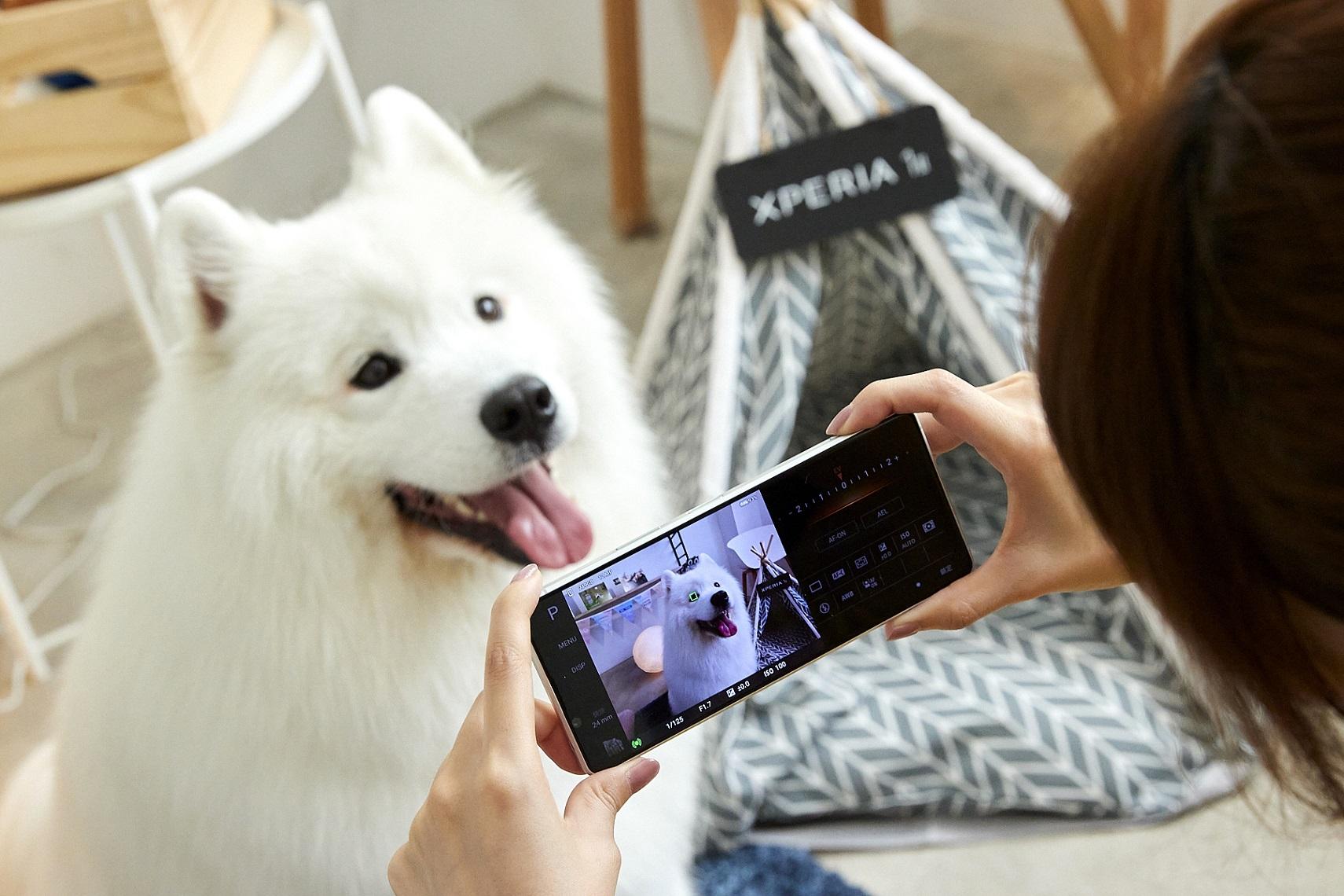 Xperia 1 II帶來動物眼即時眼部追蹤對焦功能,搭配高速連拍,輕鬆拍下寵物玩耍的瞬間,甚至連毛流都能清晰捕捉!(1)