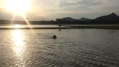 The brat enjoying her swim
