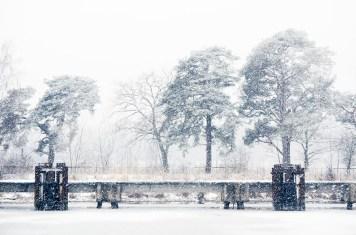 Foto, Polen, Landschaft im Winter
