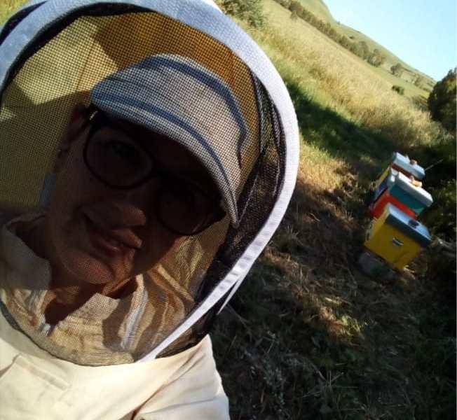 Lavoro e creatività, le api di Daniela