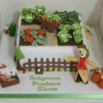 Produce Show Cake