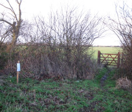 This new gate has recently been erected on the footpath between Sulgrave and Thorpe Mandeville. The notice on the post states that the construction of the high speed railway will require the stopping up or diversion of the footpath!