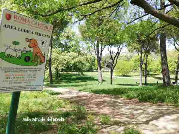 Area cani villa borghese