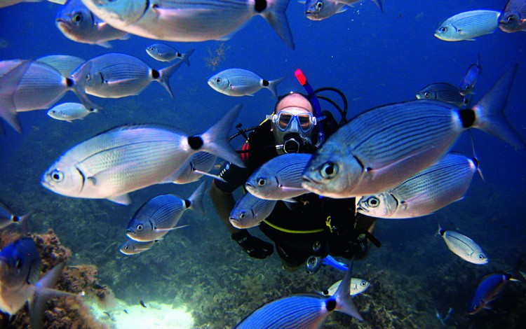 dove fare immersioni subacquee a Malta