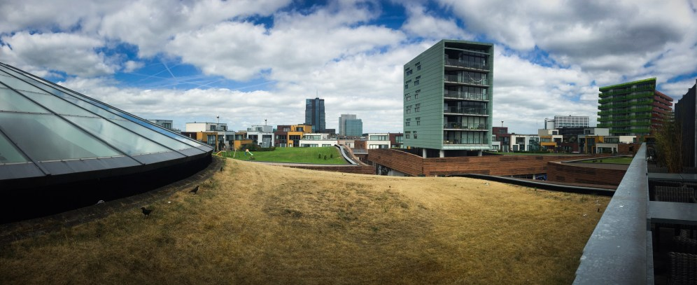 Green Roofs ON GREEN ROOFS