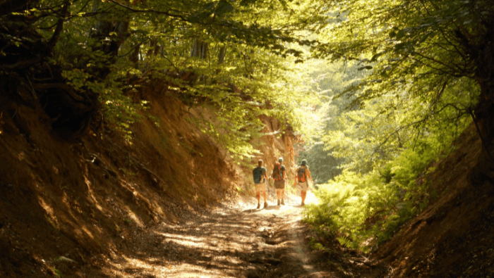 Group hike | Through the mountains Sofia-Yagodina