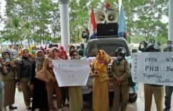 Honorer K2 di Konsel Tuntut Diangkat Jadi PNS