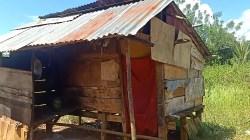 Kondisi rumah milik Kakek Ketut Tinte sebelum dibedah (Foto: Aripin Lapotende/SULTRAKINI.COM)